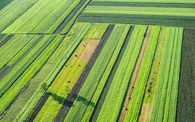 تصاویر ماهوارهای در کشاورزی